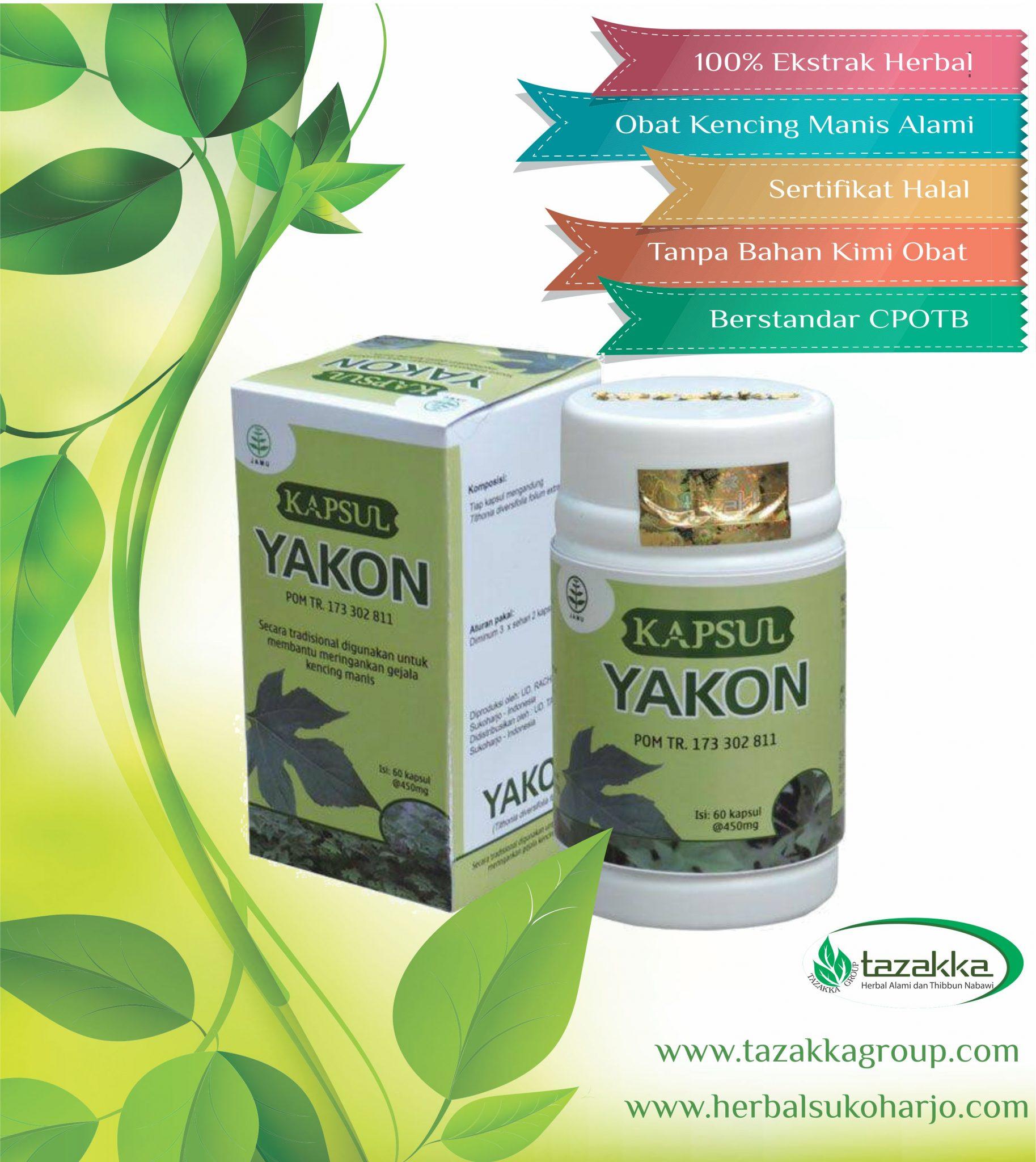 foto gambar produk obat herbal tazakka yang ampuh untuk mengobati penyakit diabetes atau kencing manis dengan herbal yakon daun insulin