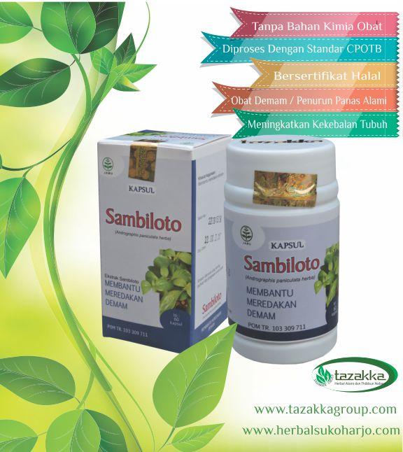 foto gambar produk obat herbal tazakka sambiloto untuk mengatasi gejala demam peningkatan suhu tubuh yang berlebih secara alami