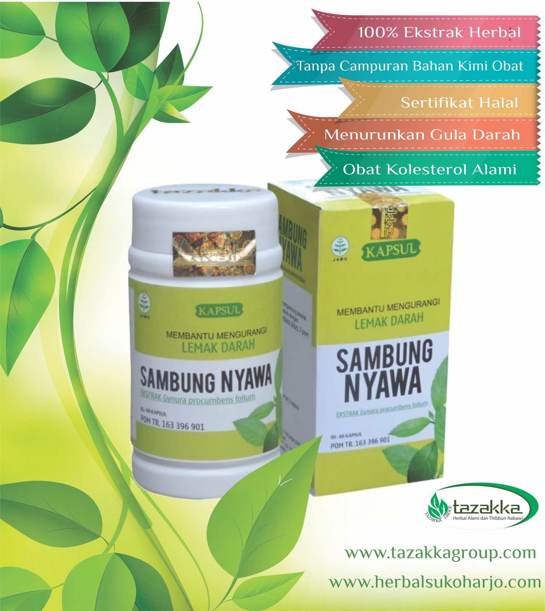 Obat-Herbal-Kolesterol-Paling-Ampuh