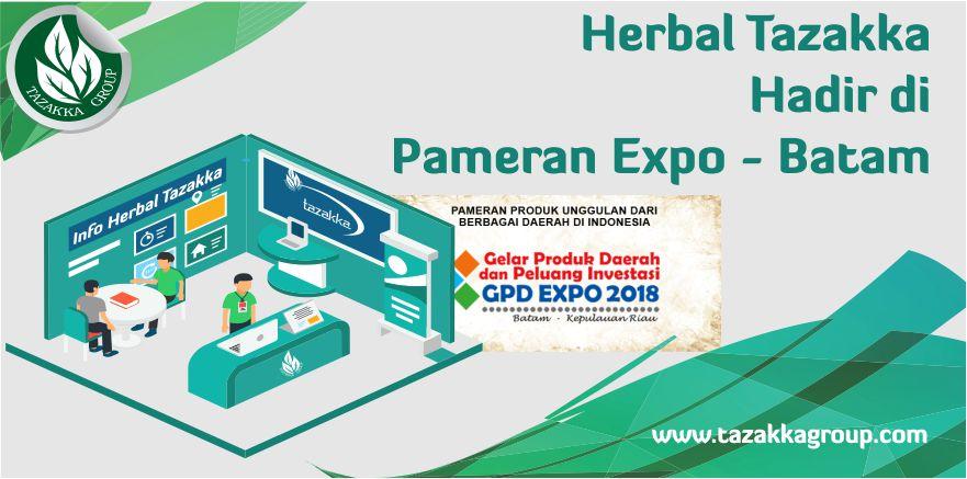 Pameran Gelar Produk Daerah Dan Peluang Investasi GPD EXPO 2018 Batam - Kepulauan Riau